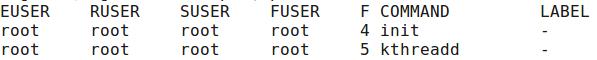 ps -eo euser,ruser,suser,fuser,f,comm,label